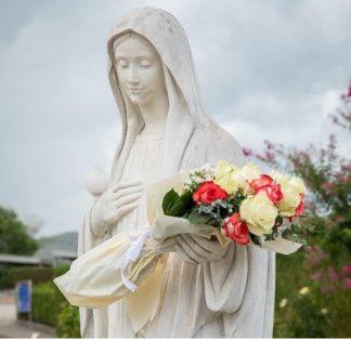 Mensagem de Nossa Senhora em Medjugorje em 25/10/2019 através da vidente Marija Pavlovic: